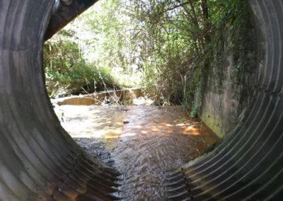 Asistencia Técnica en Dirección de Obras en Aranbeltz y control de aguas en Urruzuno