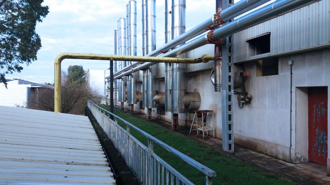 Incorporación de energías renovables (biomasa) en el Campus de Leioa